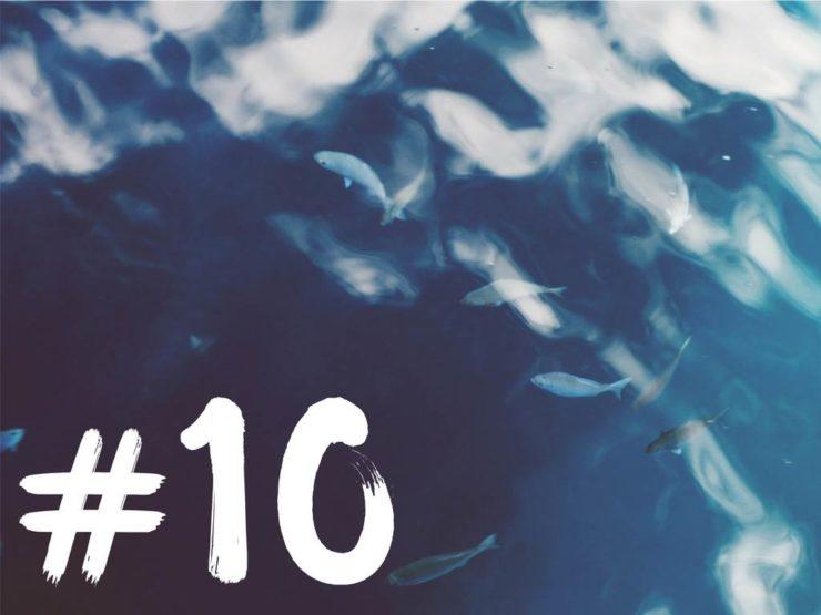 Wochenrückblick-1017 Artikelbild